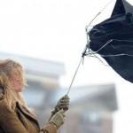 壊れにくい折りたたみ傘とは?梅雨時期や台風で使いたい傘まとめ